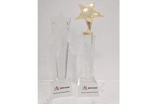 最佳企业奖、最佳公益奖